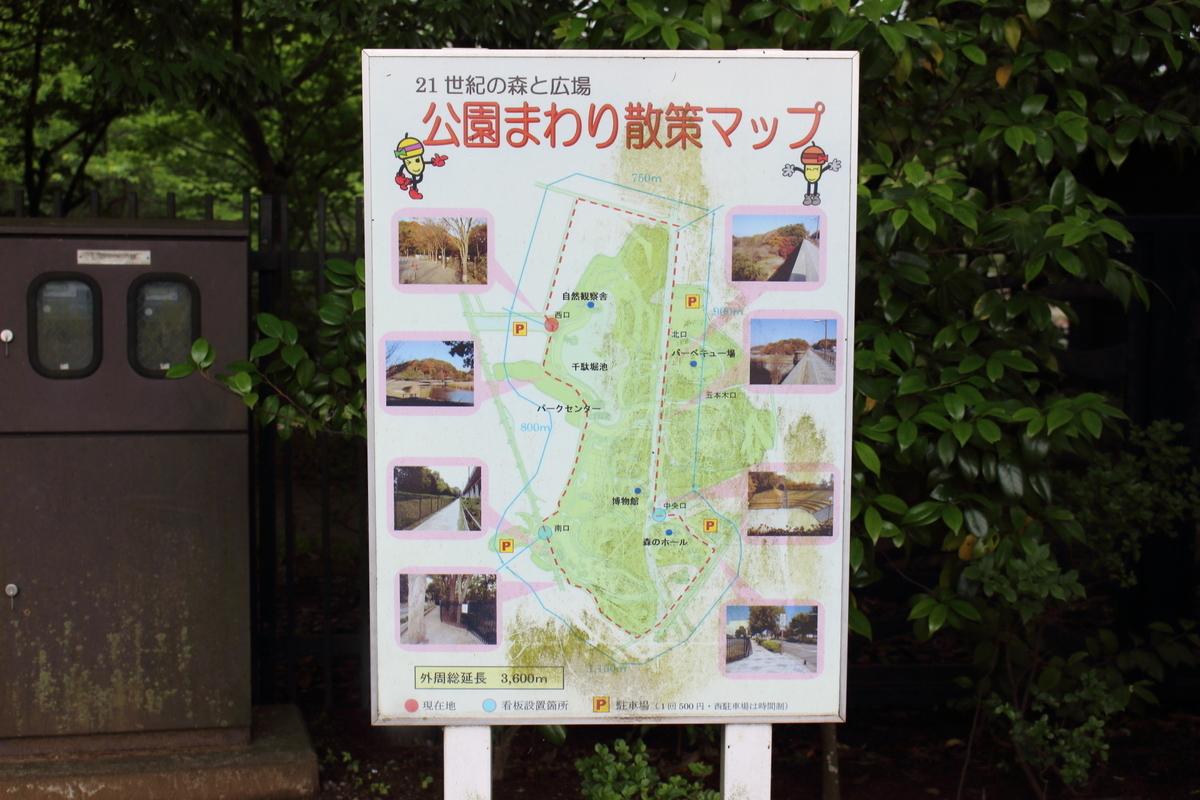 f:id:aka_nagi:20210522194926j:plain