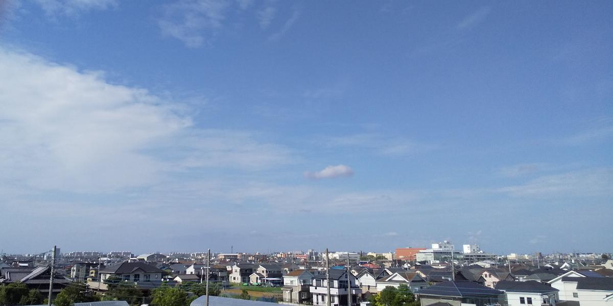 堤防から見た市街地