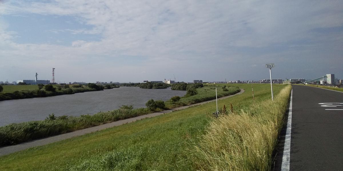 江戸川沿岸