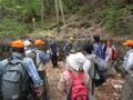 森林観察会の様子