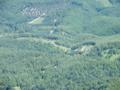 蛇骨岳山頂からシャクナゲ園