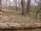 鱒池の辺り
