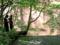 今宮渓谷、吾妻川に流れ落ちる