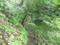 不動の滝遊歩道2