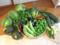 野菜一カ月分