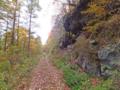 進めど林道