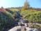 湯の丸山登山道1
