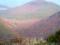 桟敷山の紅葉