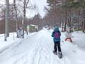 キャンプ場への林道