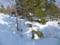 雪と風の現象