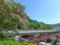 嬬恋村のネムノキ
