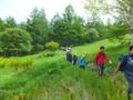 草原を横切る