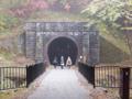 またまたトンネル