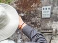 道陸神トンネル