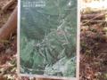 嵩山登山道地図