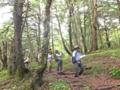 亜高山帯針葉樹林へ