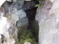 ヒカリゴケの岩陰