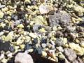 硫黄結晶の粒