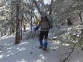 森の中を冒険