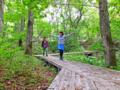 森林セラピー実践セミナー