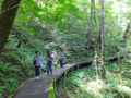 信濃路自然歩道森林浴ツアー