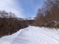 草津シズカ山スノーシュー