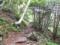 湯の丸山登山ガイド