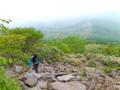 レンゲツツジは日本の固有種で、国内各地に生育するが、この地域のレ