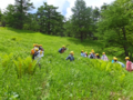 池の平自然学習