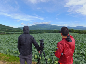 キャベツ畑と四阿山