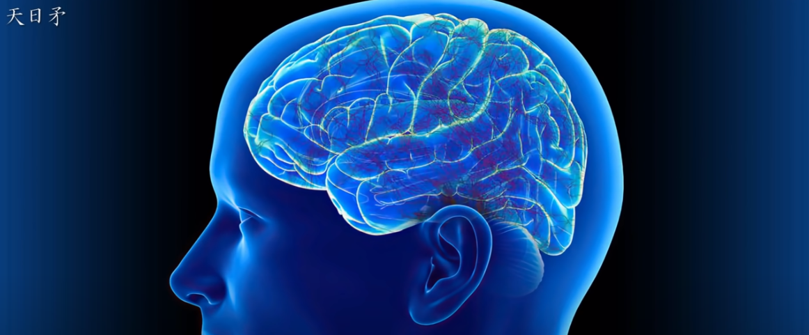 脳のネットワークコンピューター