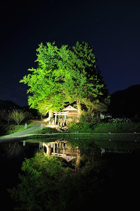 f:id:akai-chu-rip:20141104202814j:plain