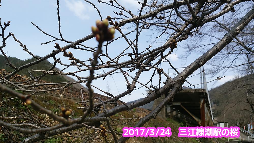 f:id:akai-chu-rip:20170324105059j:plain