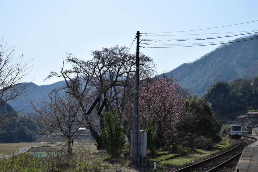 f:id:akai-chu-rip:20170404142527j:plain