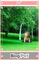 f:id:akaibara:20050828003158j:image