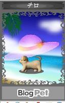 f:id:akaibara:20070713182042j:image