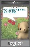 f:id:akaibara:20070823121637j:image