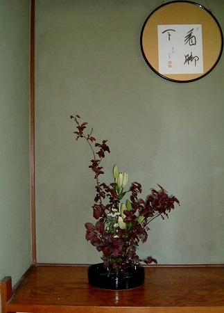 f:id:akaibara:20081002170501j:image