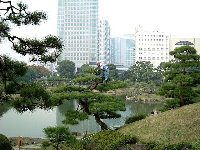 f:id:akaibara:20090217223107j:image:w450