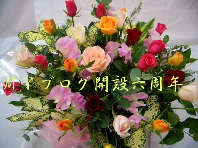 f:id:akaibara:20101119165846j:image:w450