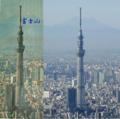 「世界一高いタワー」スカイツリーをギネス認定