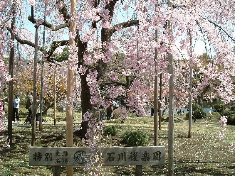 f:id:akaibara:20120405201549j:image:w500