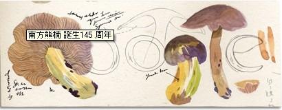 f:id:akaibara:20120518235546j:image
