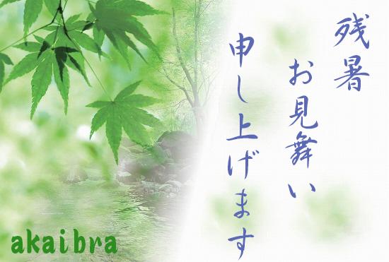 f:id:akaibara:20120814113304j:image:w450