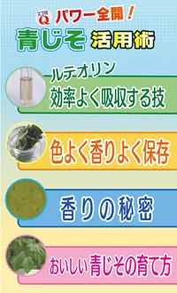 f:id:akaibara:20130611185814j:image