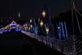 木曽三川公園のイルミネーション
