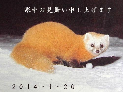 f:id:akaibara:20140120154413j:image:w450
