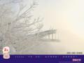 北海道 旭川 旭橋と樹氷.