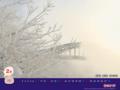 北海道 旭川 旭橋と樹氷