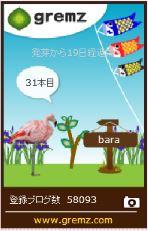 f:id:akaibara:20160429160048j:image:w170